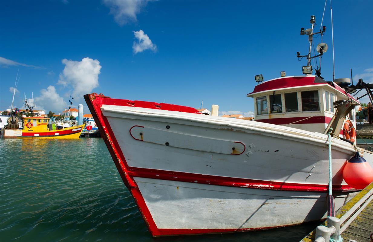 Visite du port de p che de la cotini re s jour touristique h tel des bains ile d 39 ol ron - Office du tourisme la cotiniere ...