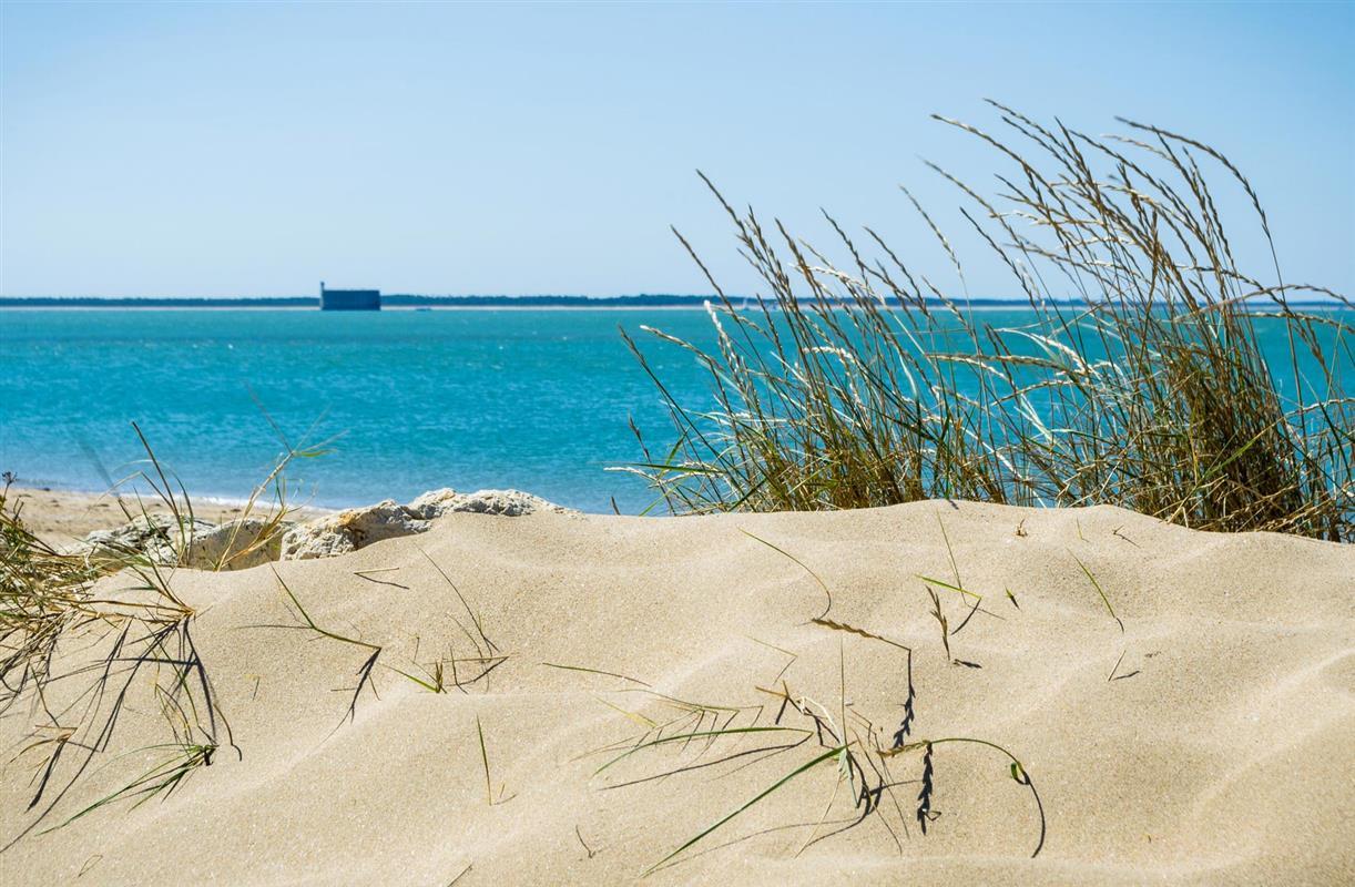 L 39 le d 39 aix en charente maritime tourisme pr s de la for Hotel des bains oleron